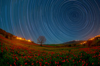 Star trail & Moon Trail