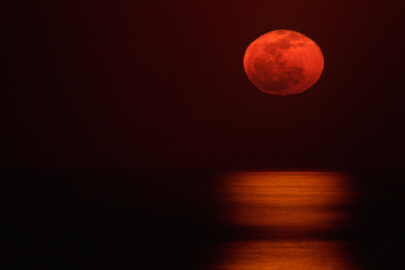 Red Moon final